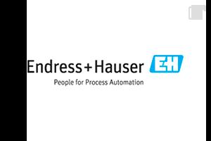 Logo EndressHauser
